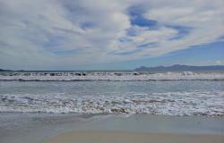 Playa de Alcúdia
